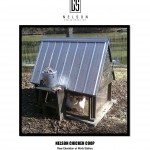 Nelson Chicken Coop - Rear